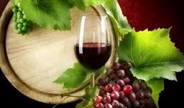 Importancia del LAE en la historia de la Viticultura mendocina